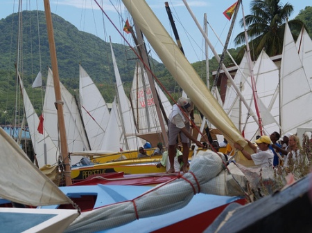 Carriacou Regatta - many sails