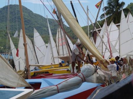 Carriacou Regatta - many sails
